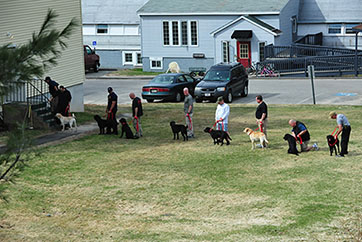 Picture of the K-9 team being trained