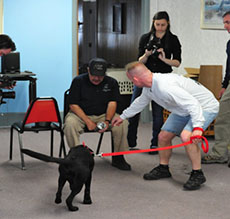 Picture of K-9 Tanya and Deputy John M. Galaska in a training session
